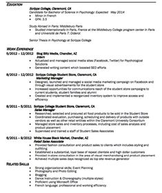 Retail Resume Sample Mesmerizing Example Of Business Mgt Resume  Httpexampleresumecvexample .