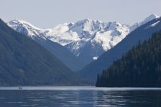 Chilliwack Lake for some Dolly, Kokanee & Cutthroat fishing