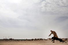 A Marine and his dog play fetch in Afghanistan  (U.S. Marine Corps photo by Sgt. Tammy K. Hineline)
