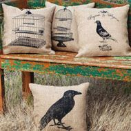 Lots of pillows in stock at Tin Star Furniture