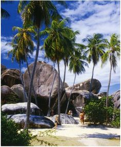 The Baths (Virgin Gorda), BVI - Huge boulders on the beach. The Baths Virgin Gorda, Places To Travel, Places To See, British Virgin Islands, Destinations, Romantic Travel, Day Trip, Vacation Spots, Adventure Travel