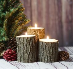 Christmas Centerpiece - Tree Branch Candle Holders - Holiday Candles - Rustic Christmas Decorations - Christmas Mantle Decorations - Gift