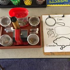 Myers' Kindergarten: Inquiring About Insects Kindergarten Inquiry, Inquiry Based Learning, Preschool Learning Activities, Preschool Themes, Project Based Learning, Classroom Activities, Science Inquiry, Sensory Activities, Teaching Ideas