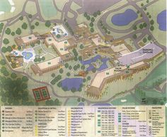 Map Shades of Green Resort at Walt Disney World