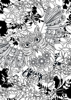 182 Best Owl Coloring Pages Images On Pinterest Paint Colouring