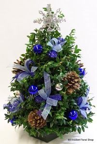 Boxwood Tree in Blues