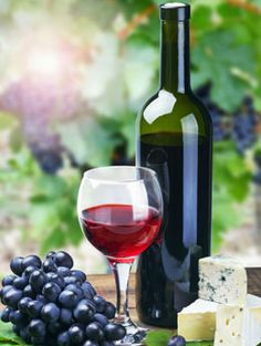 Homemade wine making has become a popular hobby among people who love the delectable taste of lovely wines made at home. Here are some recipes to help you make the perfect, most delicious homemade wines in the comfort of your home.