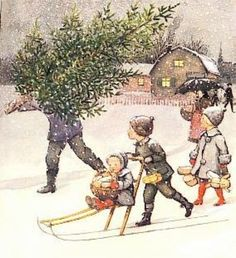 kerstboom halen