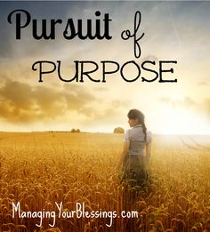 Pursuit of Purpose :: You were created with your own unique purpose and God can do great things through you. :: ManagingYourBlessings.com
