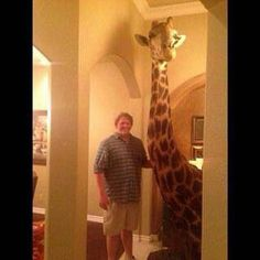 A *Esposa* fala pro *Marido*: No meu aniversário, quero de presente uma *Girafa*. O *Marido* diz: Tá louca? onde vou encontrar uma *Girafa*? Peça outra coisa! A *mulher*: ok, então gostaria que você parasse de beber ..   *MINUTOS DEPOISS*😅👇🏻👇🏻👇🏻👇🏻 😂😂
