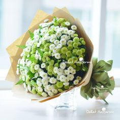 CALIMERO santini - Calimero is available in several colours Chrysanthemum, Fresh Flowers, Avocado Toast, Bouquet, Colours, Wedding, Food, Happy, Plants