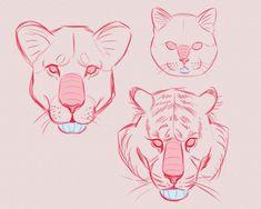 amezure: some puppies studies ( ͡° ͜ʖ ͡°) 🐶 Big Cats Art, Furry Art, Cat Art, Animal Sketches, Animal Drawings, Art Sketches, Furry Drawing, Cat Drawing, Art Reference Poses