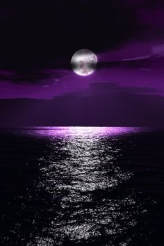 Purple Moonlight.