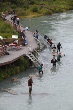 Soldotna, Alaska offers many public access fishwalks along the banks of the Kenai River.