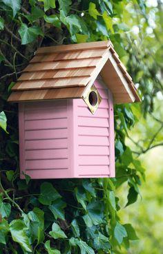 Aidez les oiseaux de votre jardin !