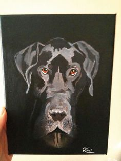 Black great dane (acryl on canvas)