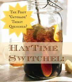 Haytime Switchel: The First 'Gatorade' Thirst Quencher