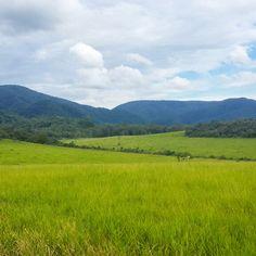 Serra do Japi #sierra