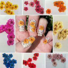 #nailart dried flowers only 75p a pack at www.charliesnailart.co.uk #naildesign #nails #nailswag #nailtrend #nailshop #nailenvy #nailideas #nailfashion