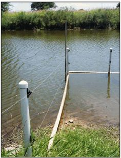 Floating pipe and electric fencing limit livestock access to the pond