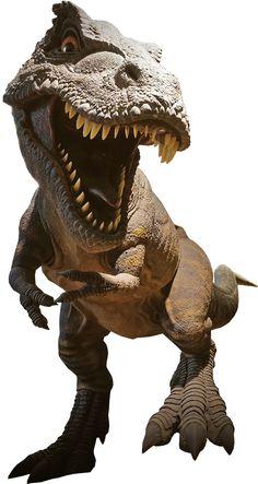 Festa Jurassic Park, Lego Jurassic, Jurassic World Dinosaurs, Jurassic Park World, Dinosaur Images, Dinosaur Art, Aquarium Drawing, T Rex Cafe, Png Vector