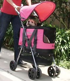 GWLittle.com!!!! Deluxe 3-in-1 Pet Carrier-Stroller