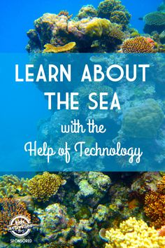Learn About The Ocean - Kids Activities Blog