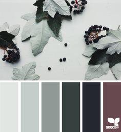 autumn tones                                                                                                                                                     More
