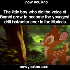 The voice belonged to Donnie Dunagan who served 3 tours in Vietnam. his true identity as Bambi remained hidden while he was in a military. He thinks people wouldn't have taken him seriously if they knew he voiced the famous fawn. It wasn't years later, until he was 70, that he made it publically known.