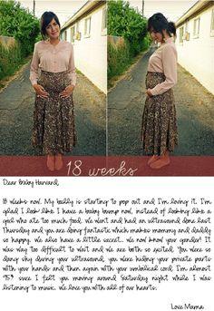 Pregnancy Series on Dearest Lou