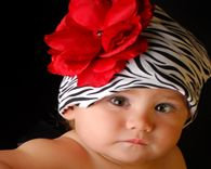 Jamie Rae Red Rose Flower Zebra Hat $9.99