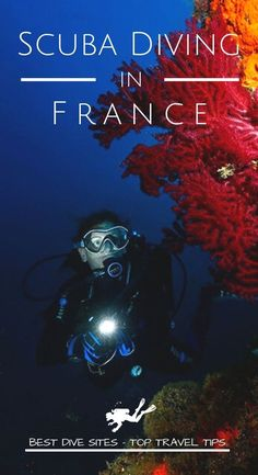Discover the best dive sites and the top travel tips to go diving in France for your next scuba diving trip #scubadiving #travel #scuba #dive #diving #best #travel #France #FrenchRiviera #Marseille #Nice Destinations, Best Scuba Diving, Destination Voyage, Best Hikes, Underwater World, Underwater Photography, Ocean Life, France Travel, Marine Life