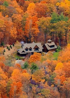 Autumn House, Albany, New York photo via redhouse