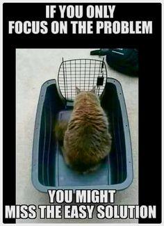 True. Lol More = https://www.funnypetstop.com/pet-memes-of-the-week-81117