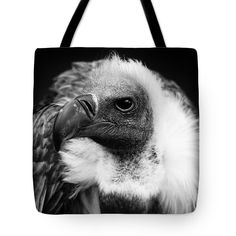 Animal Tote Bag featuring the photograph The Vulture by Jan Brons. The Vulture.     This bird of prey is one mighty bird. The vulture is a raptor and can be a ugly looking bird but it is also a bird that has to be handled with respect.     Black and White image.