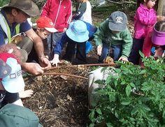 let the children play: gardening with children at preschool