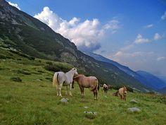 Rila Mountain BULGARIA