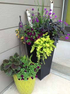 40 pretty front door flower pots for a good first impression 10 Beautiful Flowers, Container Flowers, Flower Pots Outdoor, Porch Flowers, Patio Flowers, Garden Design, Container Garden Design, Plants, Container Gardening Vegetables