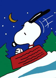 "Sledding Snoopy Hanging Flag Peanuts 28"" x 44"" Charlie Brown NEW"