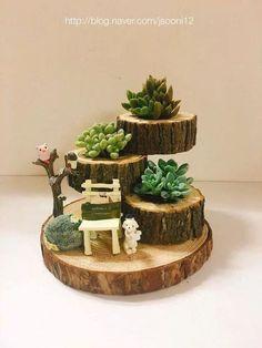 Succulents Succulents - - Gardeners - Garden Care, Garden Design and Gardening Supplies Garden Care, Garden Crafts, Garden Projects, Diy Crafts, Suculentas Interior, Winter Garden, Planting Succulents, Indoor Succulents, Succulent Gardening