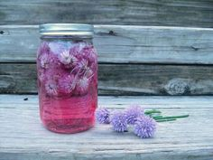 Chive Flower Vinegar- you can make a million things with chive flowers apparently. I've got a bunch about to open up now. Maybe some Chive flower herb butter? Or a chive flower stir fry? Chive Blossom, Starbucks Hacks, Vinegar Uses, Homemade Pickles, Fresh Chives, Meals In A Jar, Diy Cleaning Products, Cleaning Tips, Edible Flowers