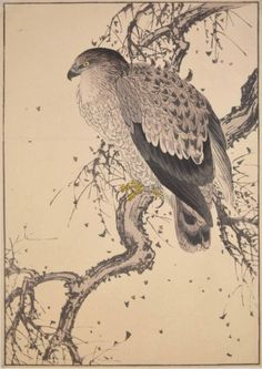 Eagle | Tattoo Ideas & Inspiration - Japanese Art | Keinen (1845 - 1924) | #Japanese #Art #Eagle