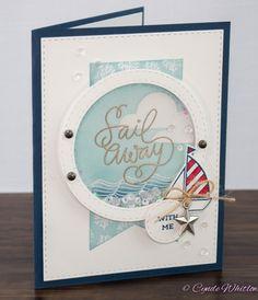 The Pink Envelope: Simon Says Stamp July 2015 Card Kit Shaker Card