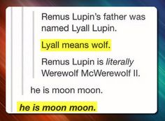 Funny pictures about All hail moon moon. Oh, and cool pics about All hail moon moon. Also, All hail moon moon. No Muggles, The Computer, Mischief Managed, Geek Out, My Tumblr, Text Posts, The Funny, Funny Pics, Funny Pictures
