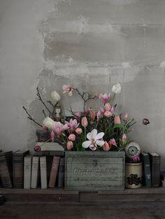 Magnólia | GAAYA arte e decoração