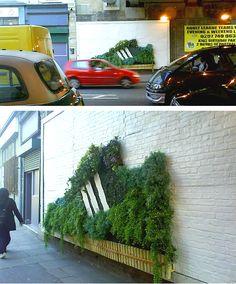 wall garden of textured greenery