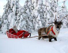 Santa in Rovaniemi, Laponia, Finland - Beaches Wallpaper ID 1894910 - Desktop Nexus Nature