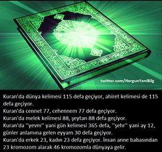Kuran'da