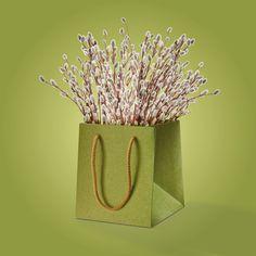 Elegante Tragetasche aus Papier mit gedrehter Kordel aus Baumwolle. Kraft Paper, Tote Bag, Flasks, Packaging, Cotton, Gifts
