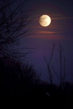 See it! Last night's penumbral eclipse | EarthSky 2/11/17 A penumbral eclipse is subtle, but has a quiet beauty all its own- Mike ONeal Oklahoma